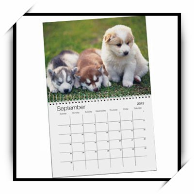 2019 Cheap Calendar Printing With Fast Lead Time